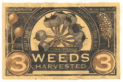 Three-Weed-Note